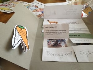 Our First Lapbook Project – All About Horses