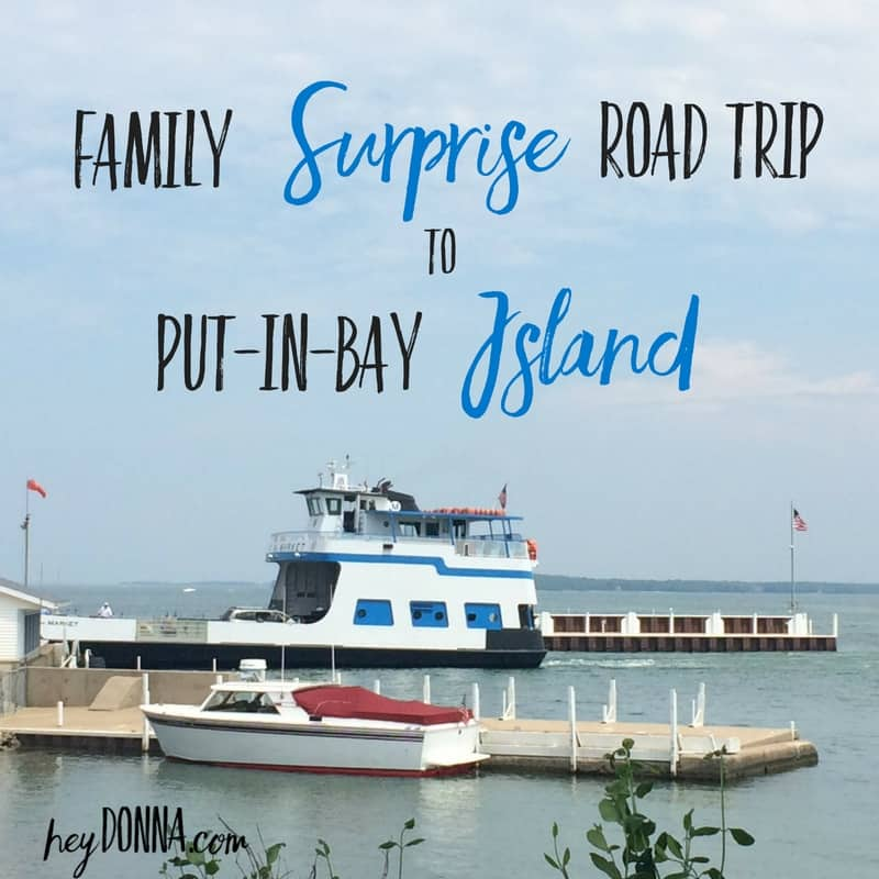 Family Surprise Put-In-Bay Island